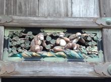 le scimmiette di nikko, giappone